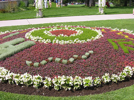 carpet_garden_2003_overview.jpg
